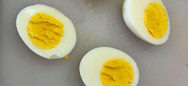 dash hb egg