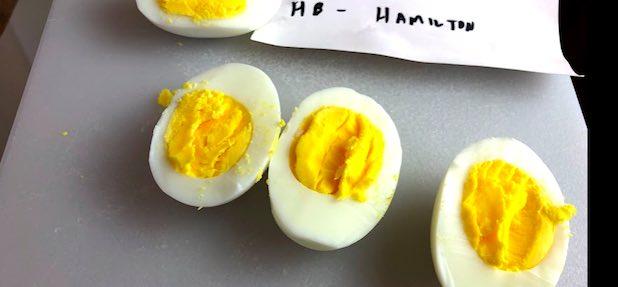 results for hamilton