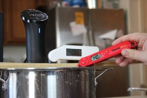 ThermoPro TP03 thermometer warm test