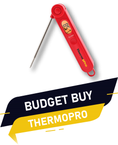 BUDGET BUY THERMOPRO 1 instant read thermometer