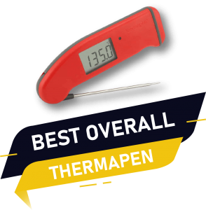 best overall thermapen 1 instant read thermometer