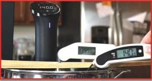 probe thermometer review