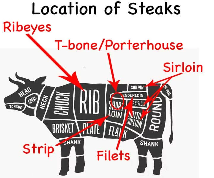 labeling cow butcher